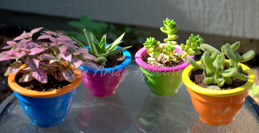 DIY Painted Planters: Summer Color Blocking