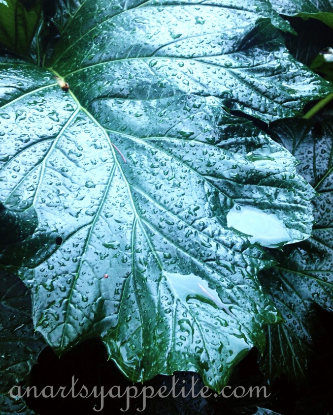wet leaf-color nature in the rain photography etsy shop