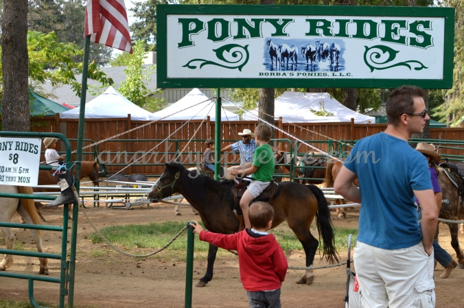 Pony rides, children fun, apple farm, travel post